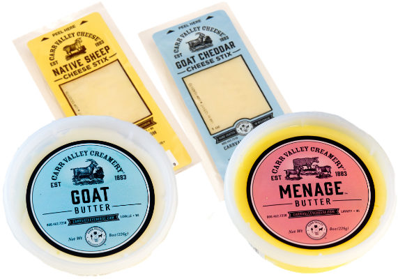 Since 1883, Carr Valley Cheese Inc., La Valle, Wis., has been making cheeses from cow's, goat's and sheep's milk. Now it's making butter. The company is introducing a line of butter made from each of the three milks, or all three together, which is known as menage. The butters come in 4-oz foil squares, as well as 8-oz clear plastic tubs. There are also new 1-oz snacking cheeses, including goat cheddar and native sheep cheddar.   (1 of 5)