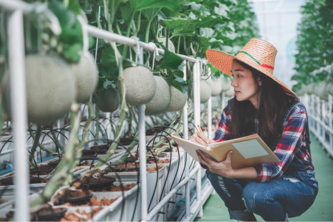 Gen Z farmer using agricultural technology to grow food
