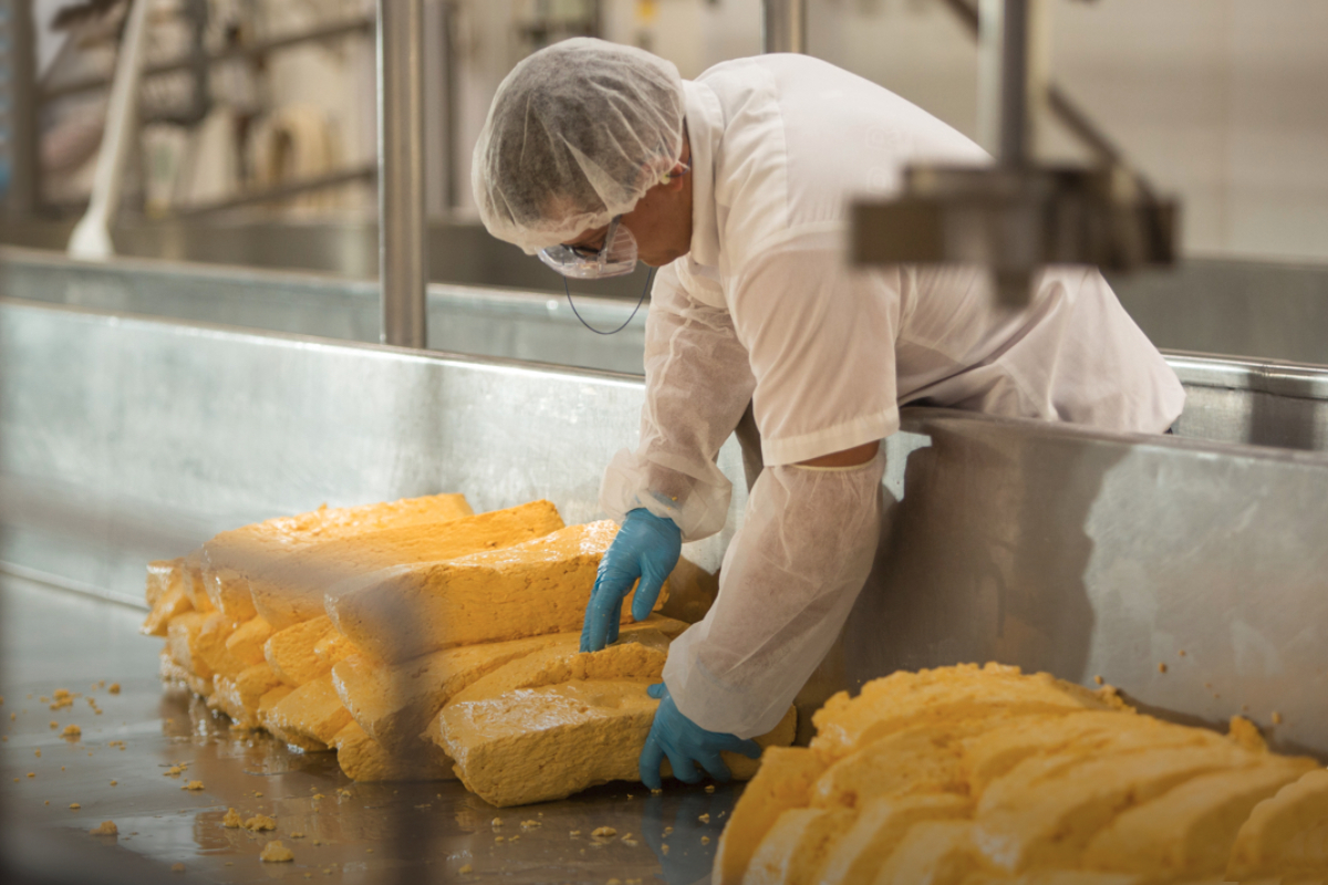 Dairy Farmers of America cheese production