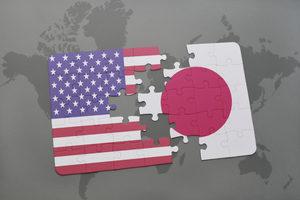 Japanusflagpuzzle_lead