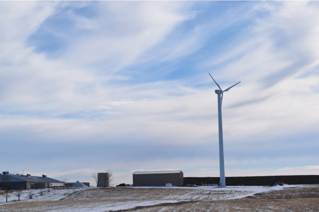 Clif Bar wind farm