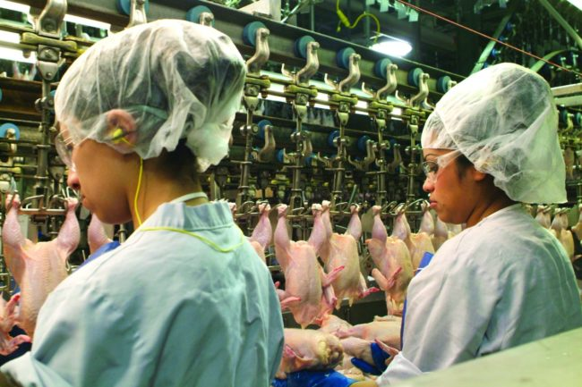 At least 25 poultry plants already operate at faster line speeds.