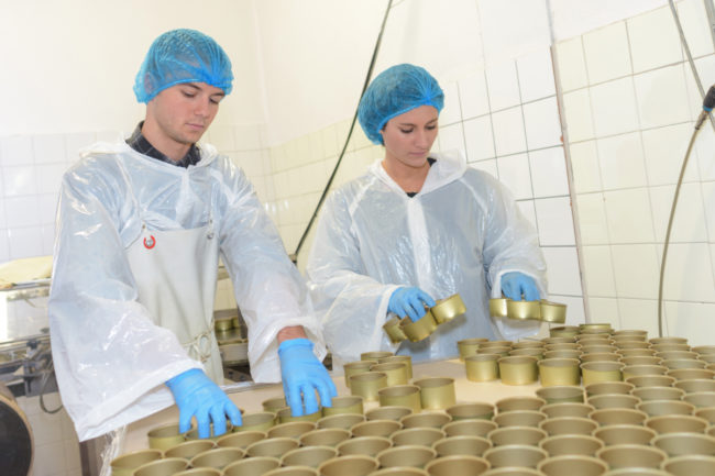 Food safety workers inspecting food in tins