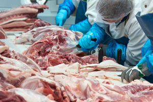 Porkprocessing_lead