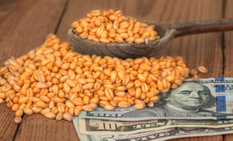 Wheatgrainsmoney_lead