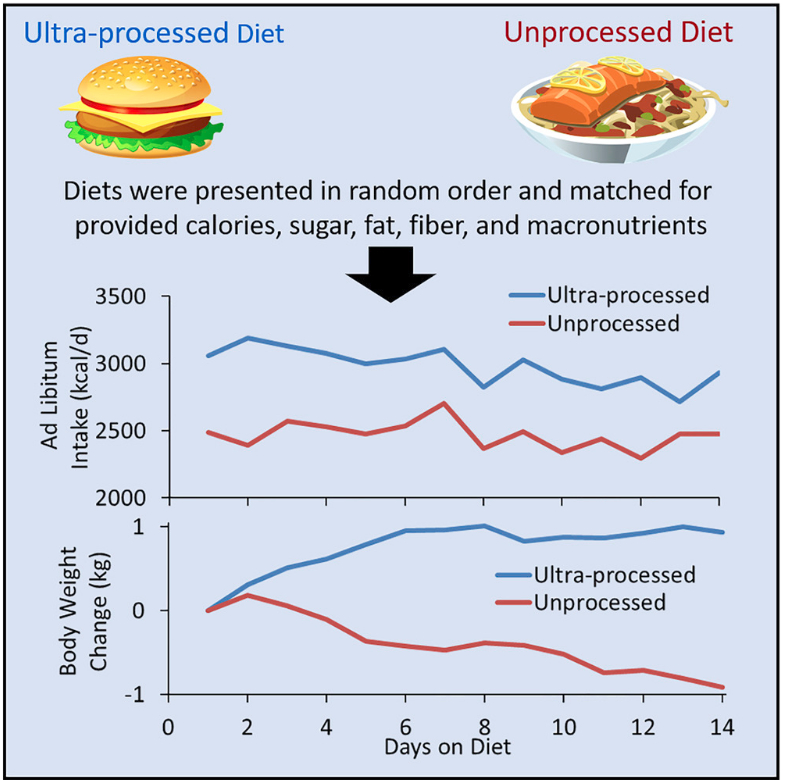 Ultra-processed diet graphic
