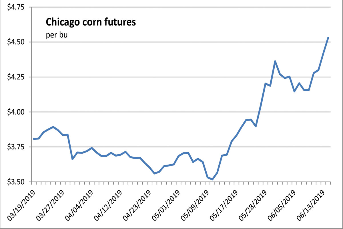 Chicago corn futures chart