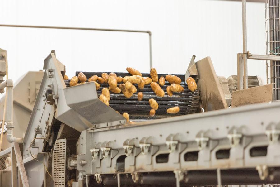 McCain Foods potato processing in Burley, Idaho