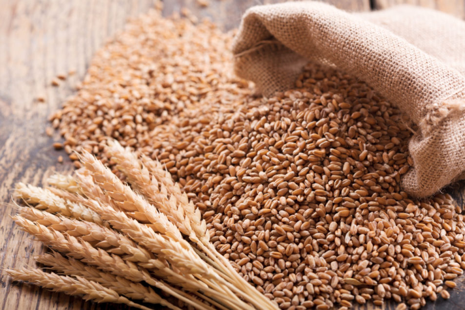 U S  organic wheat, soybean prices dip in April-May | 2019