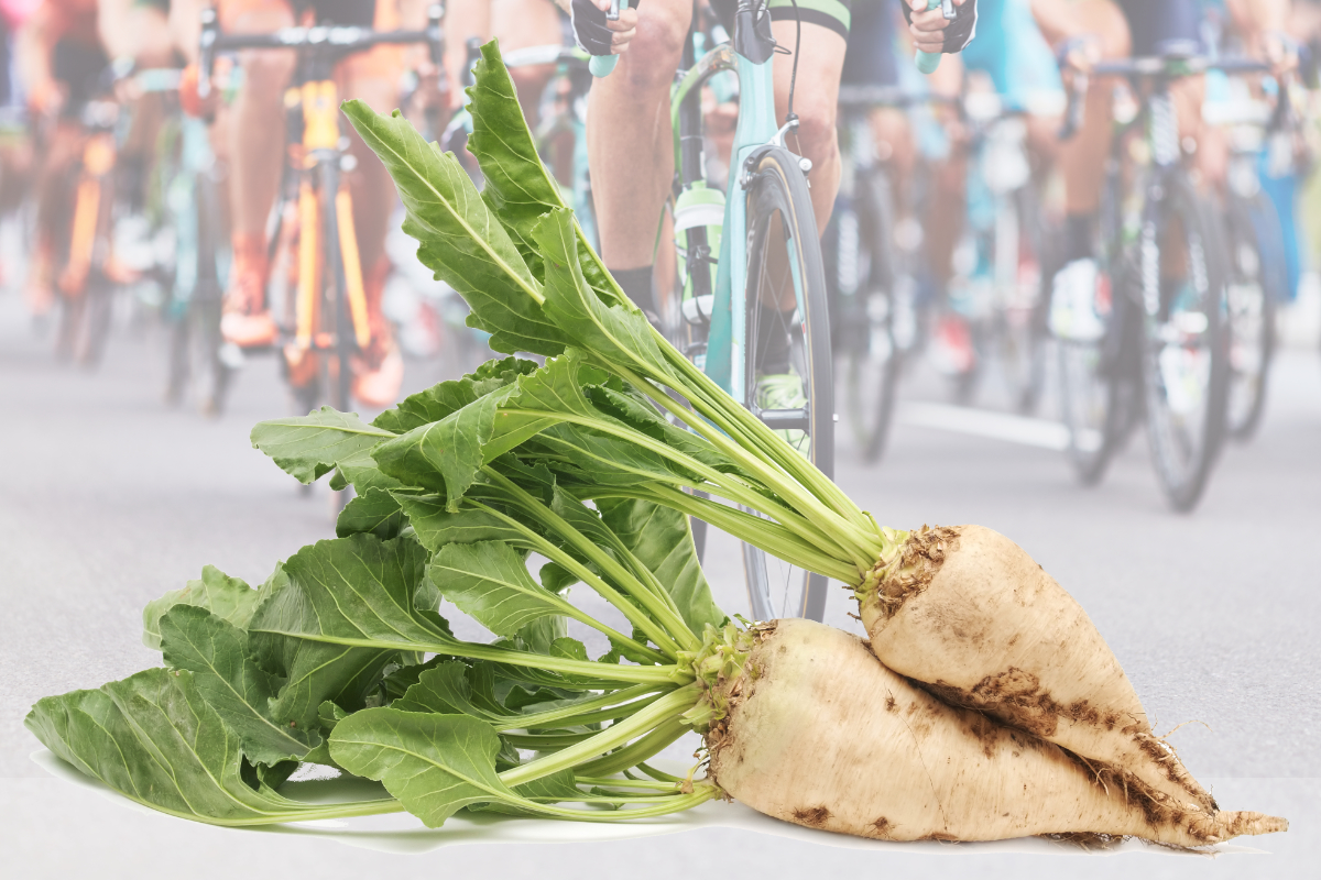 Sugar beets and bicyclists
