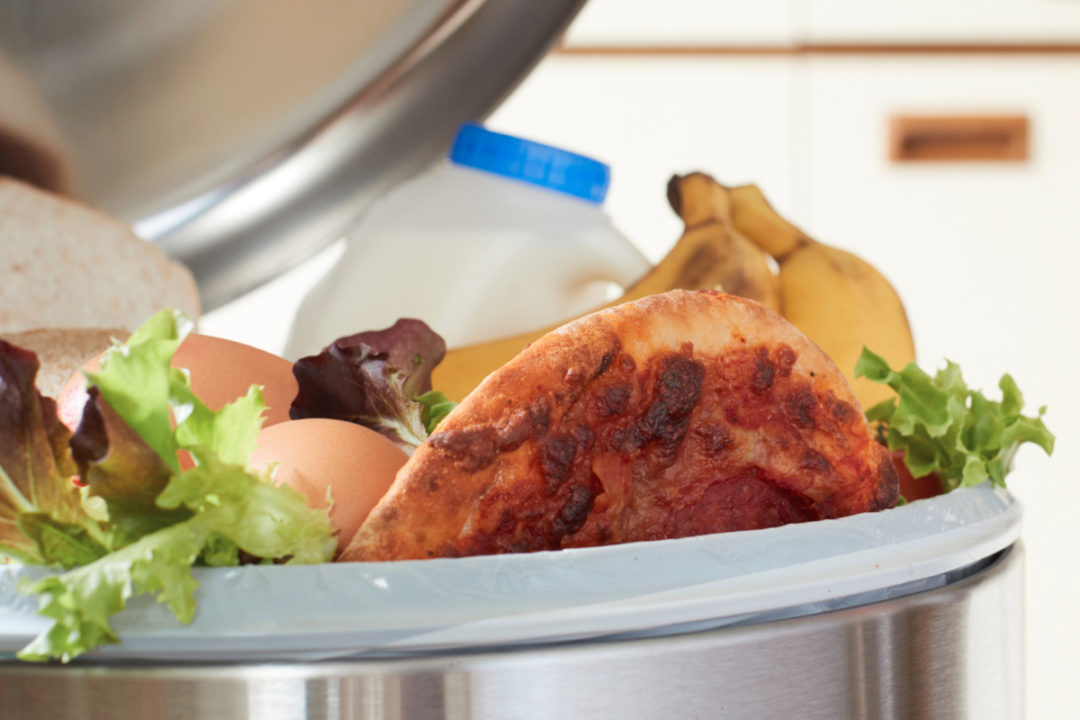 Food in the trash can