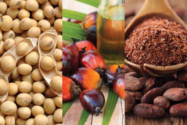 Soybeans, palm oil and cocoa