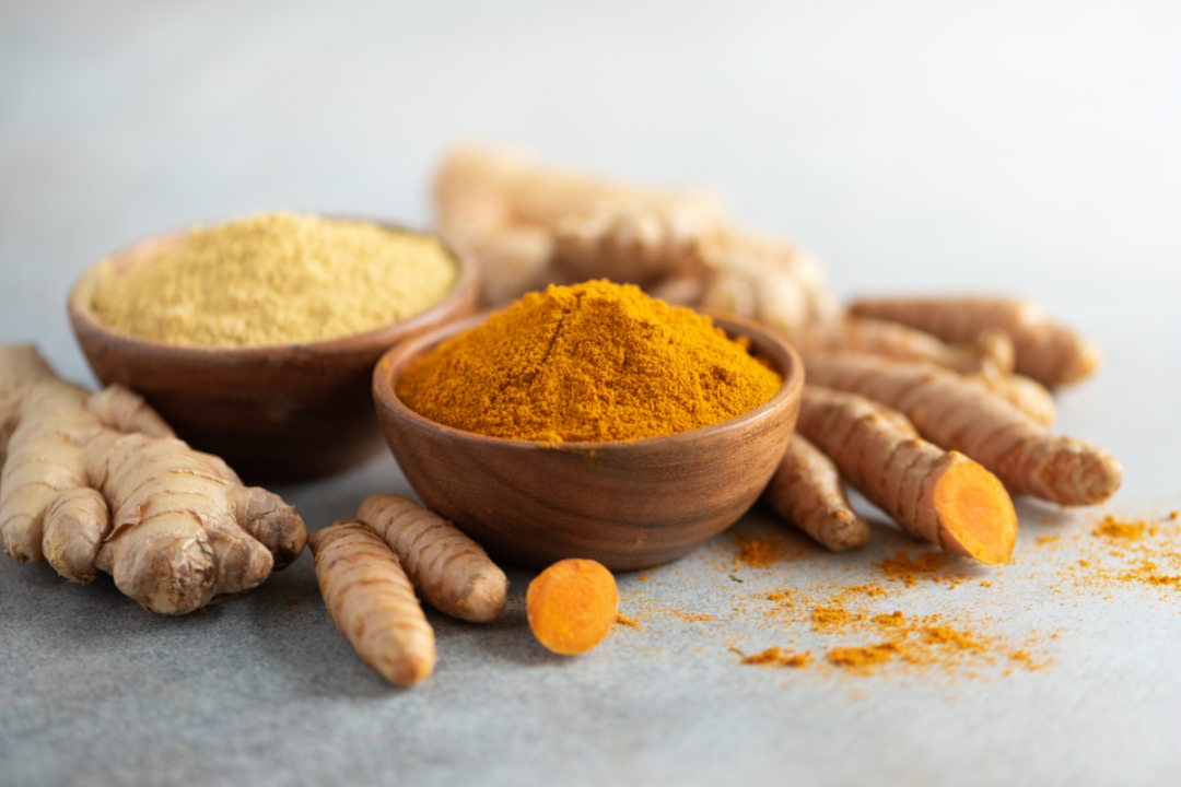 Turmeric and giger powder in wooden bowl and fresh turmeric root on grey concrete background.