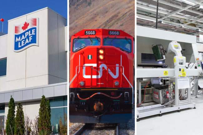 Maple Leaf Foods, Canadian National Railway and Celestica Inc.