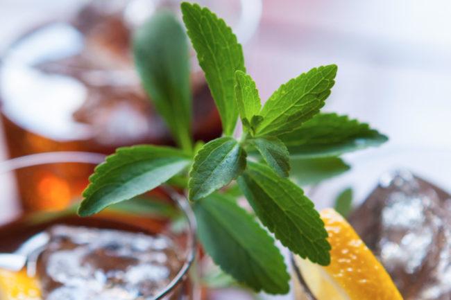 Sweet Green Fields stevia leaf in beverage