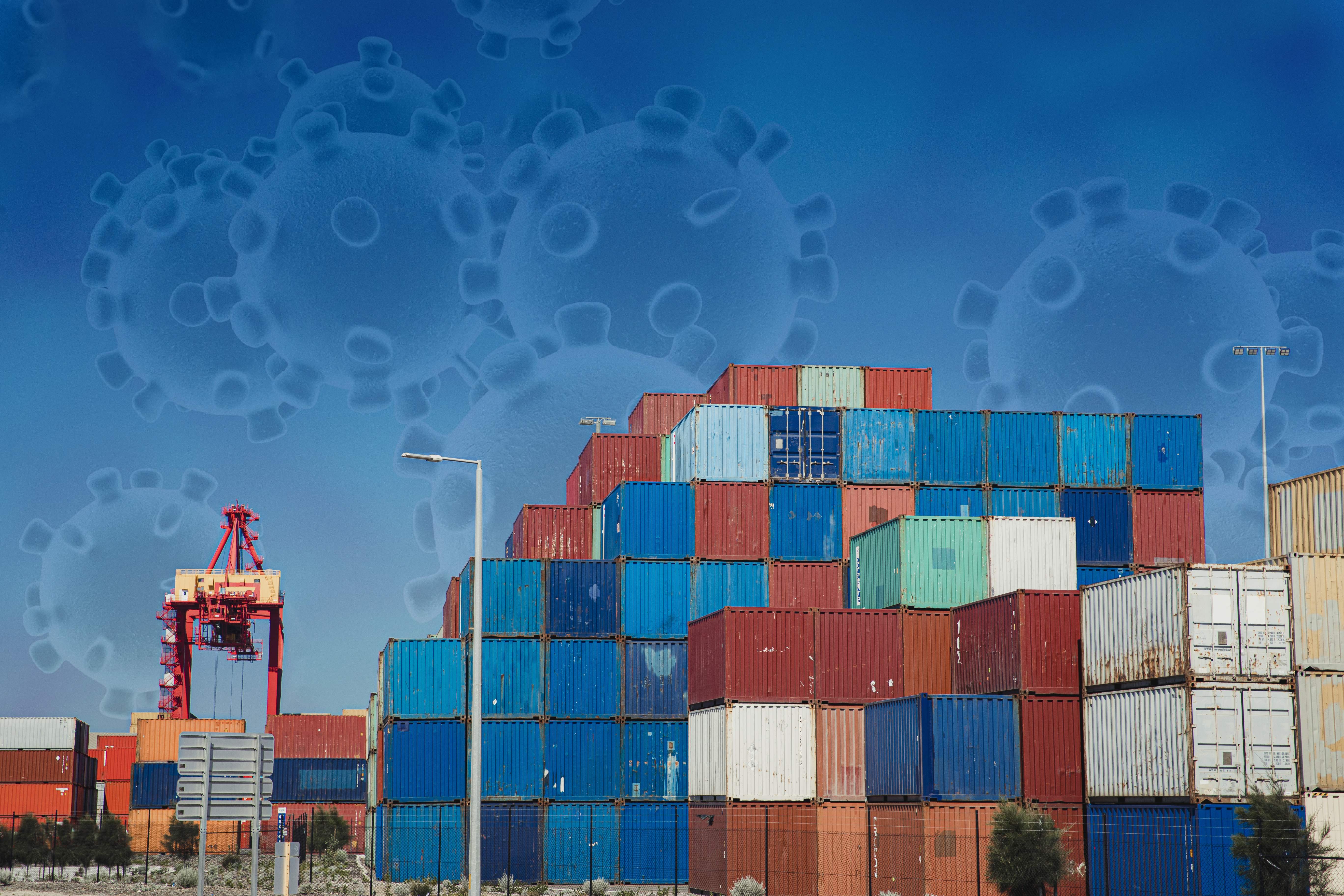 Coronavirus affecting exports