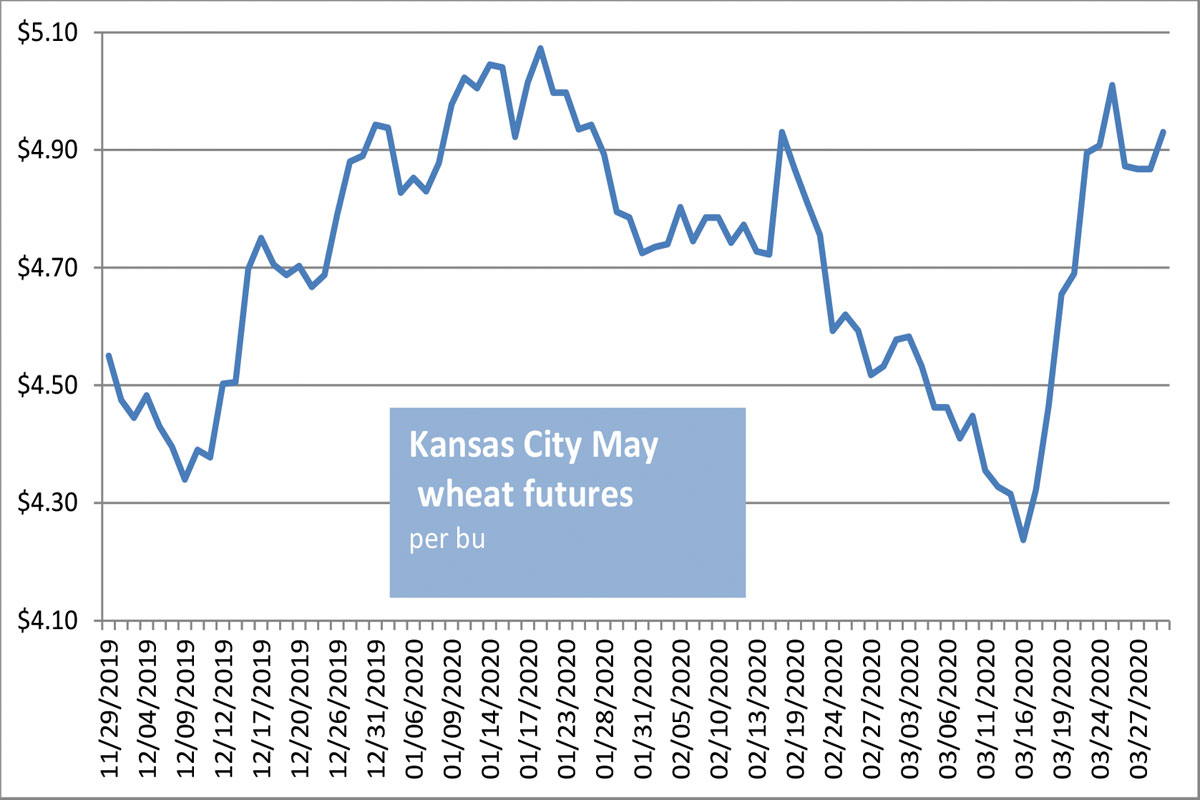KC wheat futures chart