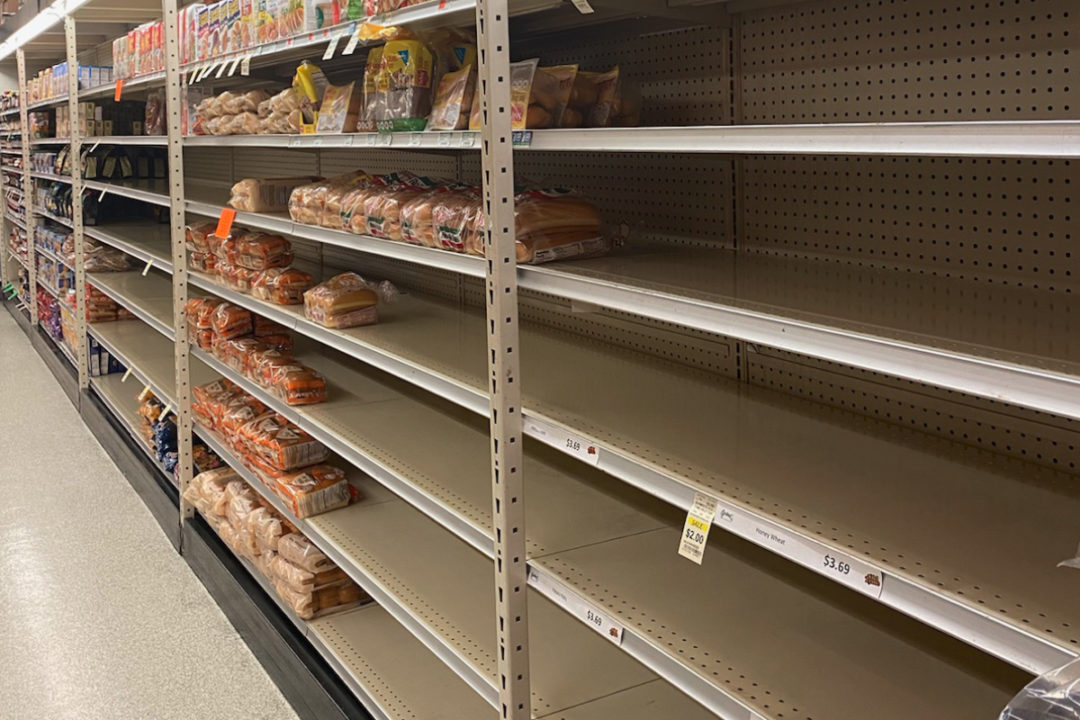 Empty bread shelves in Graul's Market, Timonium, Maryland