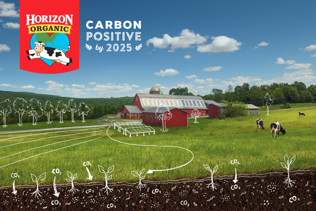 Horizon Organic carbon positive