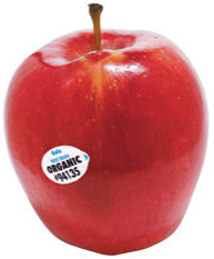 stock image of red apple with certified organic seal