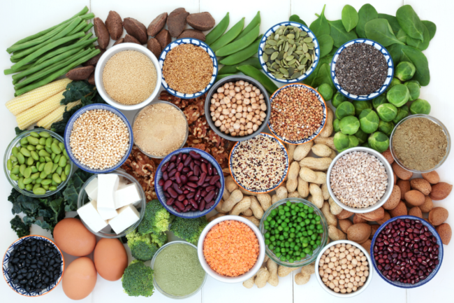 plant proteins for meat alternatives