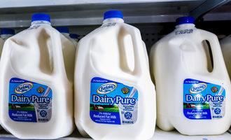 Dairypuremilkonshelves lead