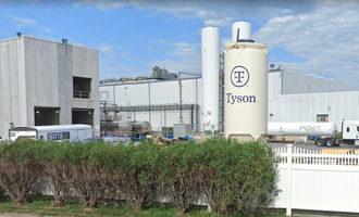 Tysonstormlakeplant lead