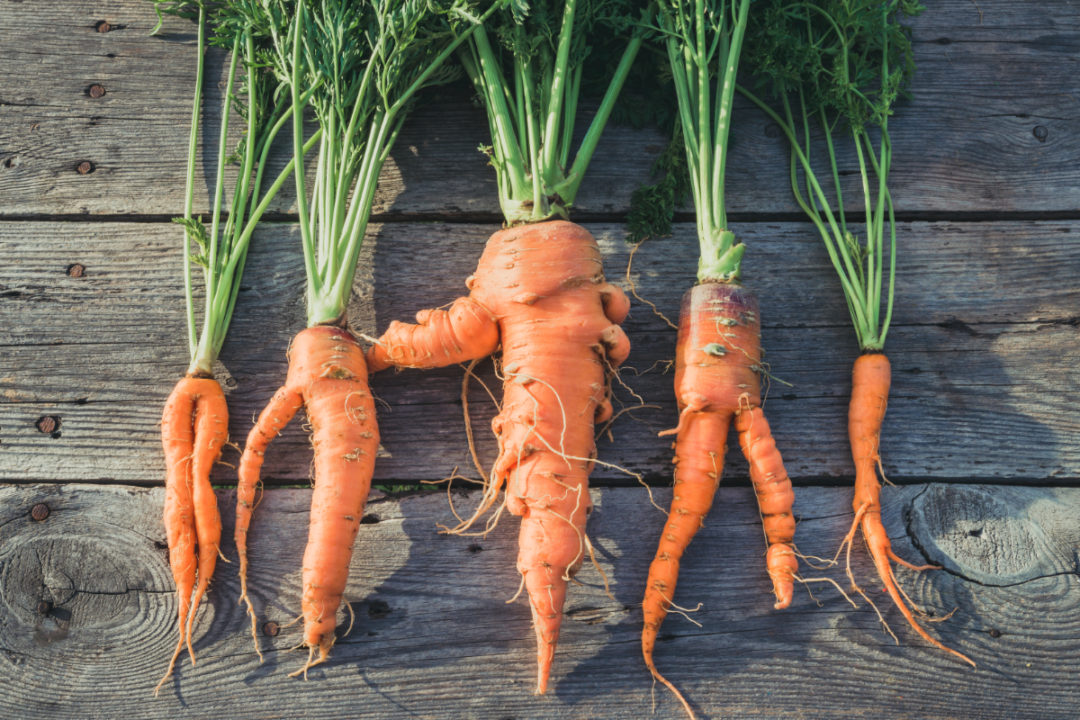 Upcycled carrots