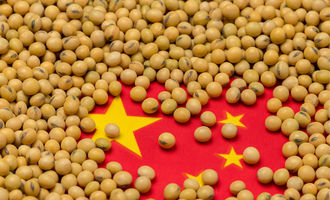 China soybean purchase lead