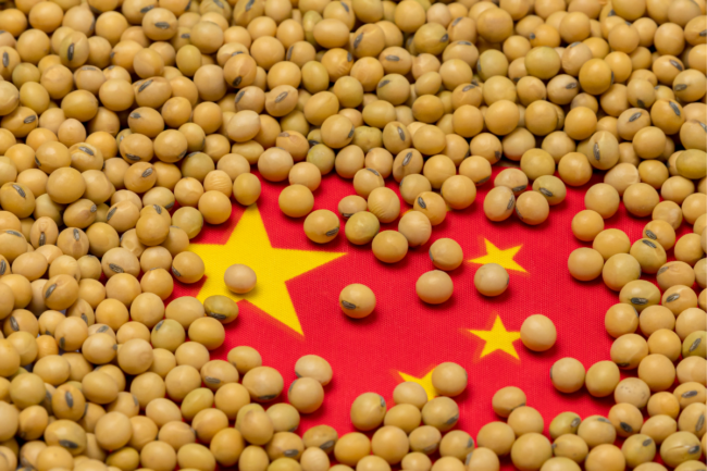 soybeans over Chinese flag