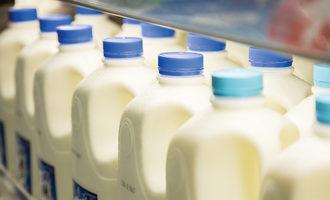 Milkjugs1200x800