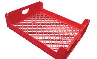 Redplastictray lead