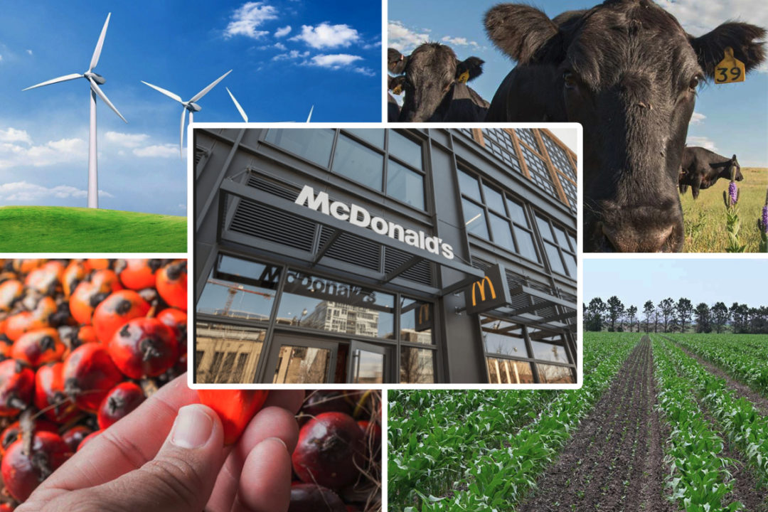 McDonald's headquarters and sustainability efforts