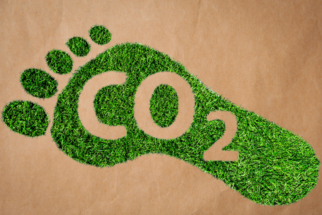 grass footprint with CO2 label
