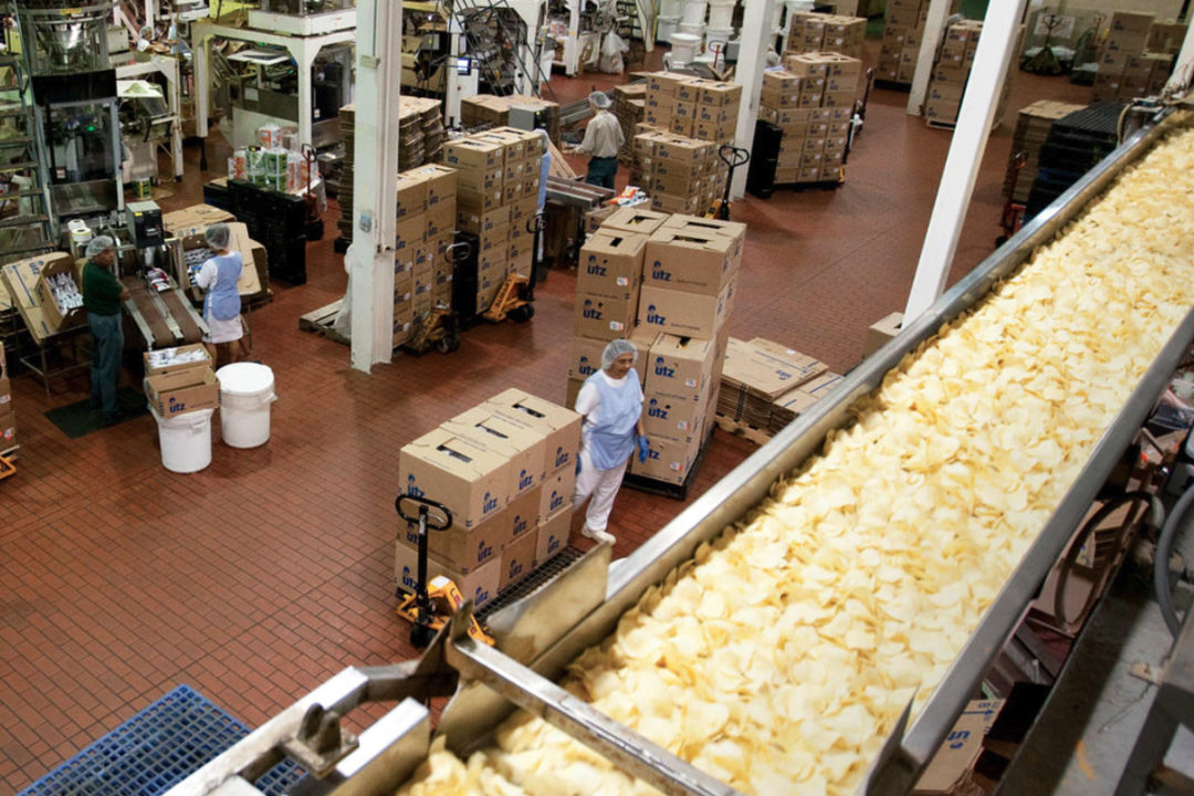 Utz employees working at a potato chip manufacturing line