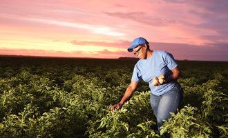 Pepsicoagricultureworker lead