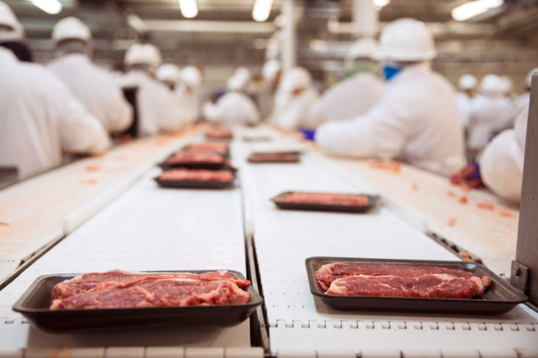 Beef manufacturing line