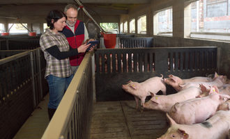 Pigfarmers lead