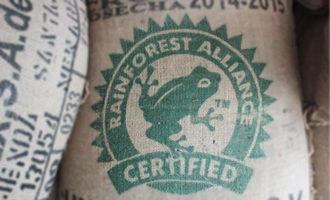 Rainforestalliancecertified lead