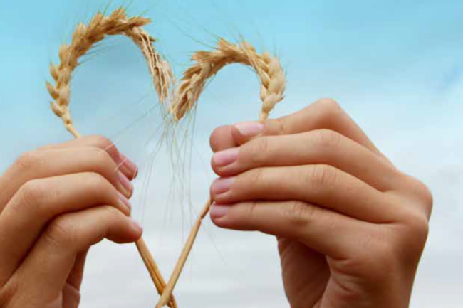 Wheat in the shape of a heart