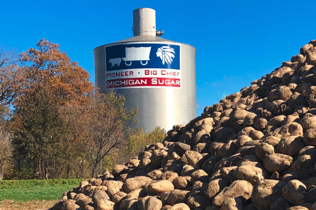 The Michigan Sugar Co. facility
