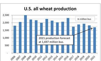 Usallwheatproductionchart lead