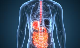 091421 digestivehealthingredients lead
