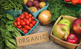 Organicproduce_lead