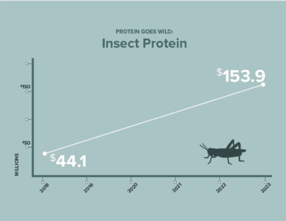 Insect protein chart