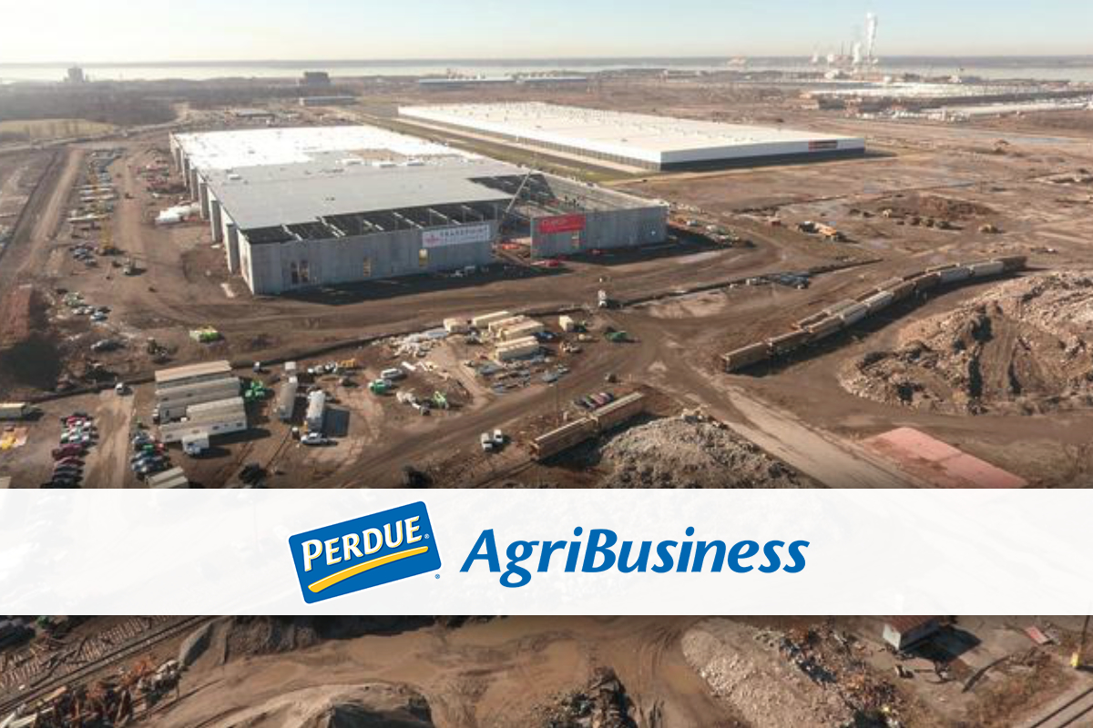 Perdue AgriBusiness organic grain receiving and storage facility at Tradepoint Atlantic