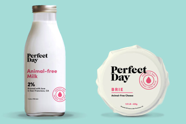 Perfect Day animal-free milk and cheese