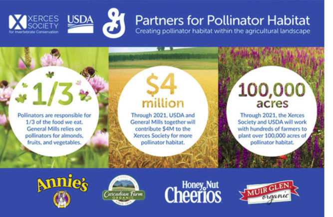 General Mills pollination infographic