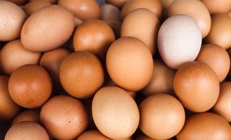Eggs1200x800