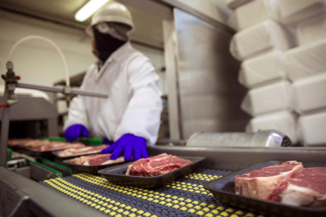 Food safety meat production